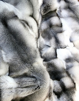 Fur - Arctic fox