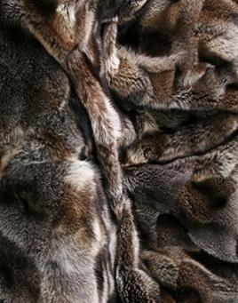 Pelz - Waschbär